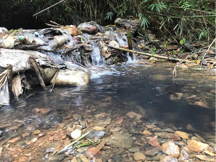 Kẻ 'chủ mưu' vụ đổ dầu thải vào đầu nguồn nước sông Đà ra đầu thú