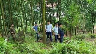 Tá hỏa phát hiện Phó chủ tịch xã ở Bắc Giang tử vong trên núi