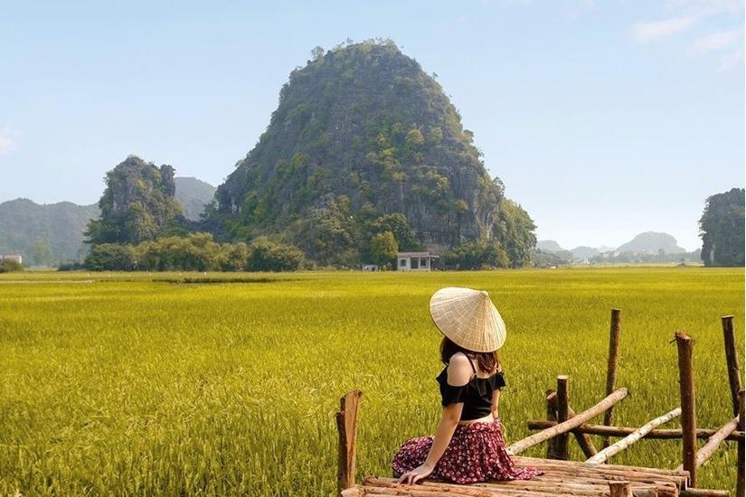 Sen nở rộ, lúa trải vàng ở địa điểm check-in hot nhất Ninh Bình 3
