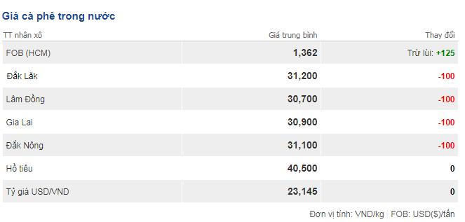 Giá cà phê hôm nay 25/10: Tiếp tục giảm thêm 100 đồng/kg