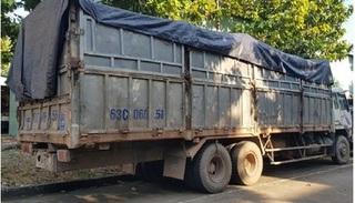 Tài xế bị rắn độc cắn nhập viện khi đi đổ trộm hàng chục tấn chất thải