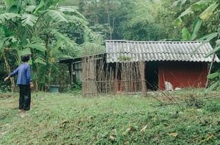 Khó tin cuộc sống dưới tán rừng Tam Đảo của người phụ nữ mất chồng hóa điên dại