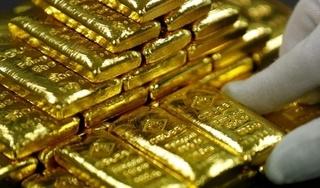 Giá vàng hôm nay 11/11: Nhích nhẹ từ đáy sâu