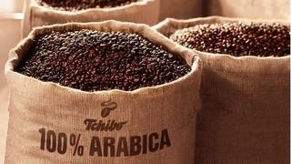 Giá cà phê hôm nay 8/11: Tiếp tục tăng giá ngày thứ ba liên tiếp