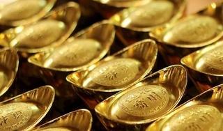 Giá vàng hôm nay 7/11: Giá vàng tăng trở lại