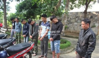 Nhóm nghiện mang vũ khí nóng thực hiện hàng loạt vụ trộm chó ở Nghệ An