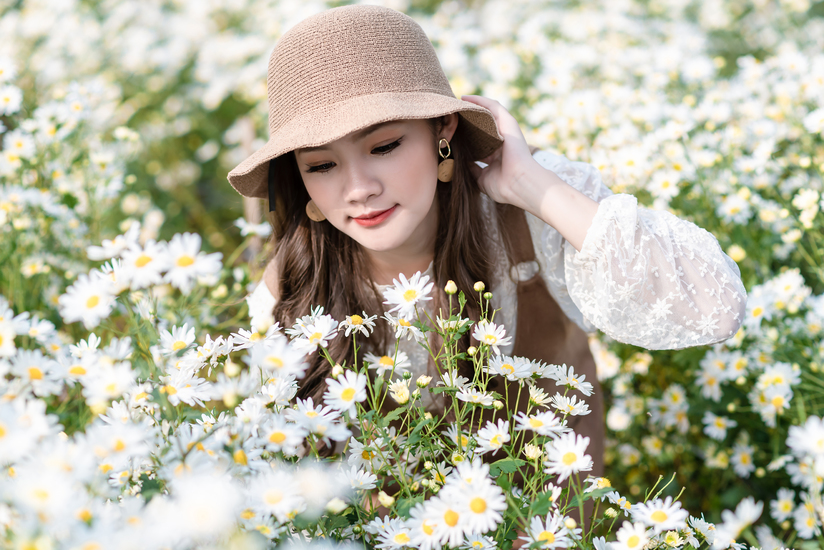 Hotgirl Hà Thành khoe sắc tại cánh đồng cúc họa mi