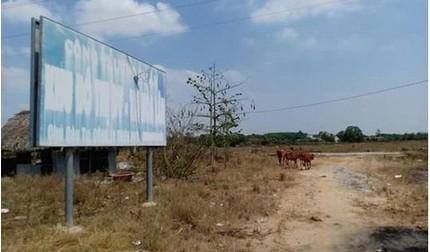 Công ty Kim Oanh có phải chủ đầu tư dự án KDC Hòa Lân?