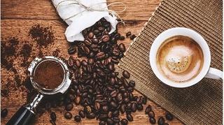 Giá cà phê hôm nay 14/12: Cuối tuần giảm mạnh 600 đồng/kg