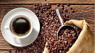 Giá cà phê hôm nay 3/1: Giảm nhẹ 100 đồng/kg