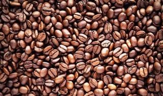 Giá cà phê hôm nay 21/12: Tăng nhẹ phục hồi 100 đồng/kg