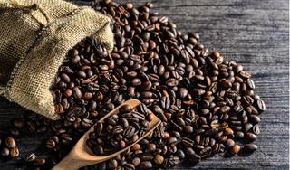 Giá cà phê hôm nay 31/12: Giảm nhẹ phiên cuối cùng trong năm