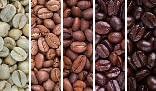 Giá cà phê hôm nay 10/1/2021: Khu vực Tây Nguyên liên tiếp giảm nhẹ