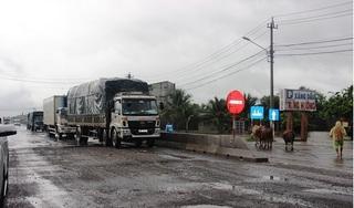 Kiến nghị Thủ tướng xử lý sai phạm dự án QL1 đoạn Bình Định-Phú Yên