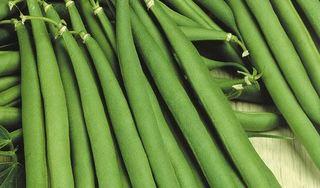 Cảnh báo những rau củ này không nấu chín sẽ thành chất độc, thậm chí tử vong