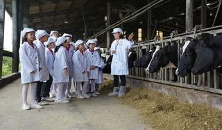 Một ngày trải nghiệm vui vẻ của các em nhỏ tại trang trại bò sữa Organic TH