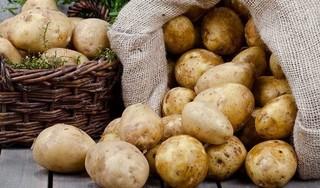 Những công dụng tuyệt vời khi chăm sóc sắc đẹp bằng khoai tây