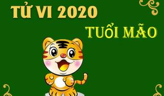 Tử vi năm 2020 Canh Tý của tuổi Mão: Thái Tuế Tý Thủy hung cát đan xen