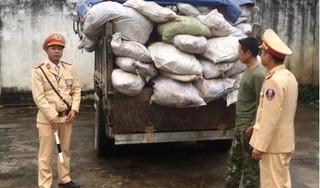 Nghệ An: Bắt 4 tấn da trâu, bò bốc mùi tuồn ra thị trường