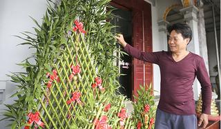 Nông dân Thái Bình thu hàng tỷ đồng nhờ cây phát lộc dịp Tết Nguyên đán