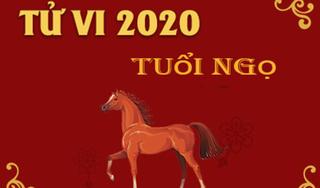 Tử vi năm 2020 Canh Tý của tuổi Ngọ: Xung Thái Tuế, hiểm họa trùng trùng