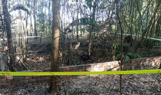 Công an Tây Ninh thông tin về vụ phát hiện 9 bộ hài cốt ở vườn cao su