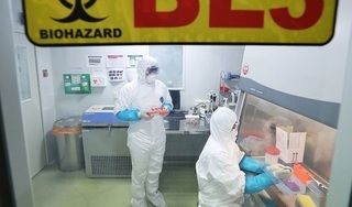 Viêm phổi do virus lạ ở Trung Quốc hiện vẫn chưa có thuốc đặc trị