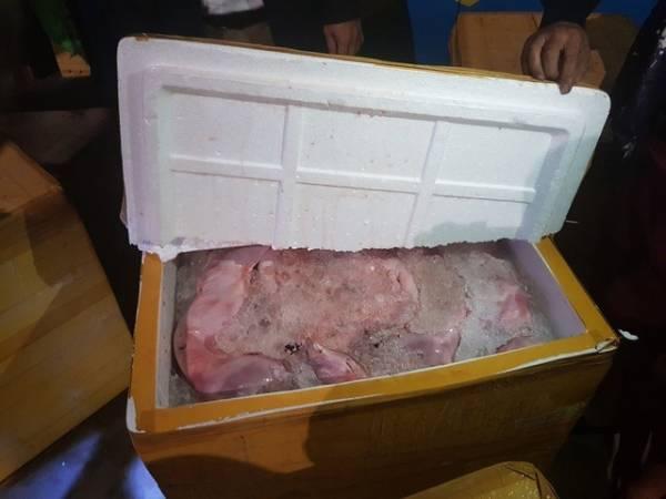 Bắt quả tang xe khách chở hàng trăm tạ thịt mèo bốc mùi hôi thối