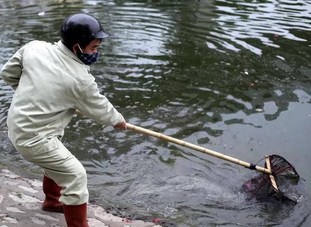 Loạt ảnh xấu xí thả cá chép trong ngày tiễn ông Công ông Táo