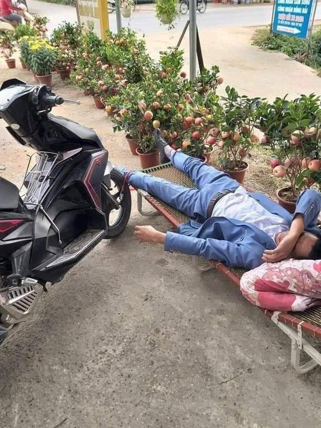 Người đàn ông nằm vật giữa cửa hàng quất cảnh, khóa bánh xe vào chân2
