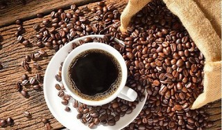 Giá cà phê hôm nay 22/1: Tăng mạnh những ngày 28 tết