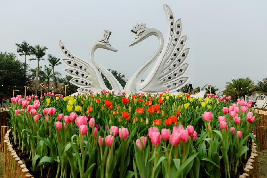 Thưởng thức 'bản giao hưởng mùa xuân' tại Ecoppark