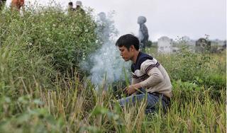 Người dân Hà Nội kiếm tiền triệu mỗi ngày từ nghề săn