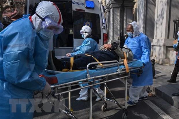 259 người chết, hơn 11.000 nhiễm virus corona