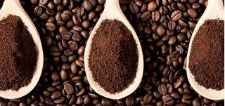 Giá cà phê hôm nay 21/11/2020: Khu vực trong điểm tăng từ 300-400 đồng/kg