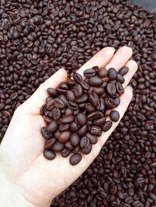 Giá cà phê hôm nay 14/2: Có dấu hiệu tăng sau đà giảm sâu