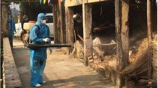 Khánh Hòa và Thanh Hóa chuẩn bị công bố hết dịch Covid-19