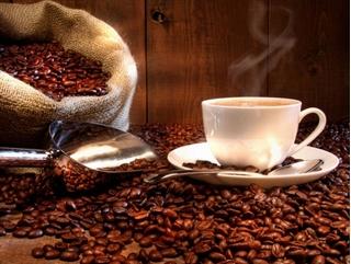 Giá cà phê hôm nay 19/2: Thị trường trong nước tiếp tục giảm mạnh