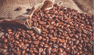 Giá cà phê hôm nay 14/1/2021: Thế giới quay đầu bật tăng mạnh mẽ