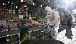 Hàn Quốc 556 người nhiễm và 4 người chết vì Covid-19