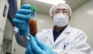 Vắc-xin thử nghiệm virus corona đã sinh ra kháng thể