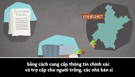Làm thế nào cung cấp thức ăn cho 10 triệu dân Vũ Hán, nơi bị cách ly đã một tháng?