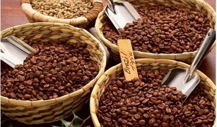 Giá cà phê hôm nay 26/2/2020: Tăng nhẹ sau 2 phiên giảm mạnh