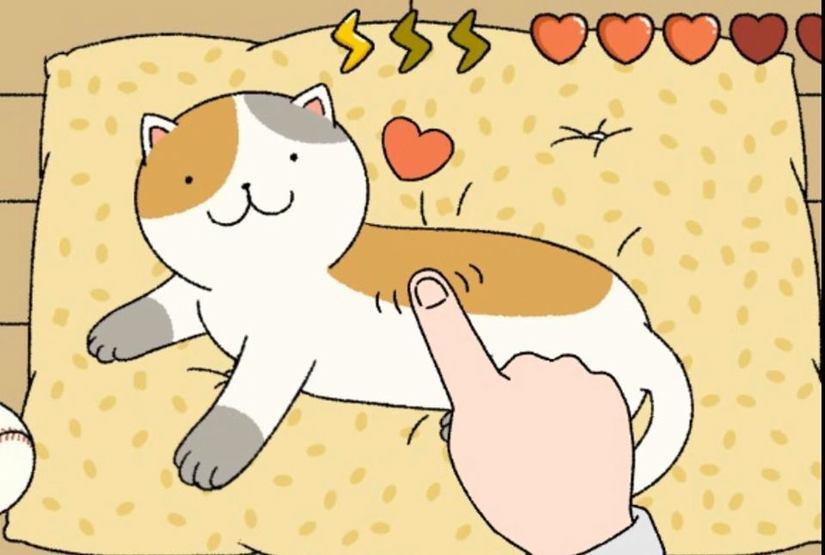 cách chăm sóc mèo trong game