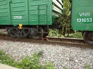 Cô gái trẻ lao vào đoàn tàu đang chạy bị cán cụt chân