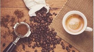 Giá cà phê hôm nay 1/3: Tiếp tục giảm xuống 30.000-32.000 đ/kg