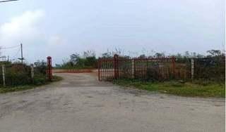 Bắc Kạn: Đất chăn nuôi Khu tái định cư Đồn Đèn 'biến' thành trang trại