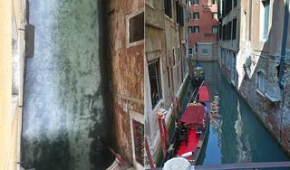 Các con kênh tại Venice trở nên trong như 'pha lê' vì lệnh phong tỏa