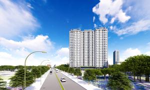 Nhà đầu tư BĐS đua nhau gom hàng, trước ngày Thuận An lên thành phố