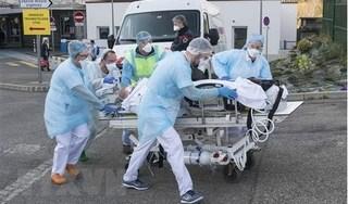 WHO cảnh báo, người trẻ tuổi cũng có thể tử vong vì Covid-19